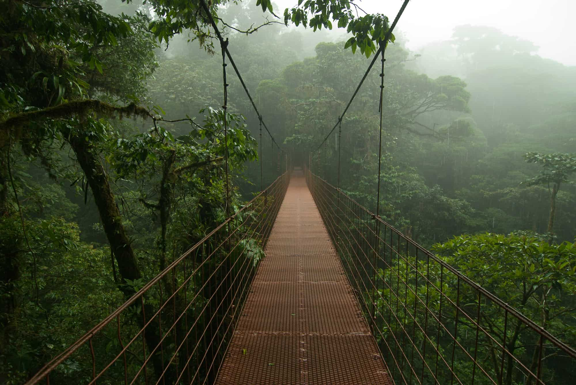 What to do in Monteverde